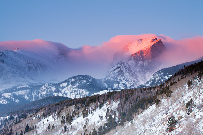 Sunrise light engulfs Hallet Peak in a pink hue in Rocky Mountain National Park