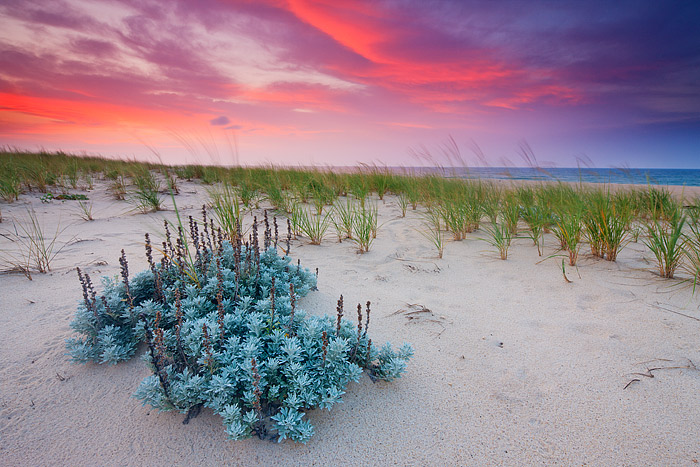 Sunrise at Southampton, New York and Dune Beach