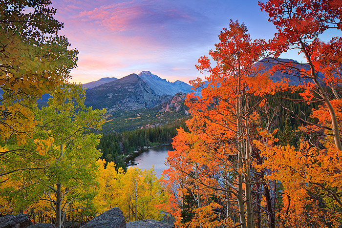 Longs Peak is framed by beautiful aspens above Bear Lake in Rocky Mountain National Park