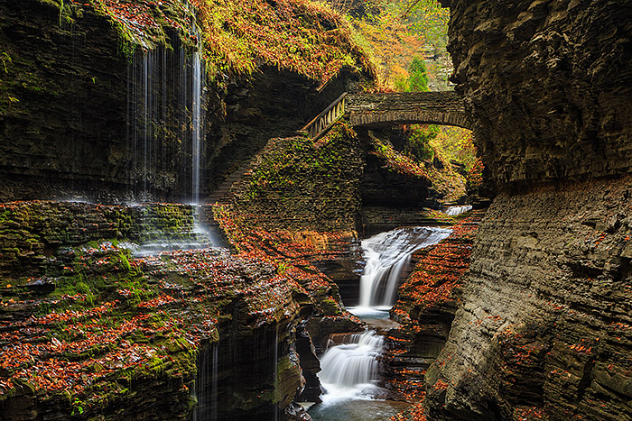 Few places are more dramatic in fall then Watkins Glen. The numerous waterfalls, fall colors,and rocks covered with colorful autumn leaves make it feel as if there is a new image to be created every few feet. Technical Details: Canon EOS 5D Mark III, 24-105mm F4 IS