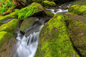 Tioratti Creek in Harriman State Park rumbles through the moss covered boulders plush with green from recent rains. Technical Details: Canon EOS 5D Mark III, 24-70mm F4 IS L