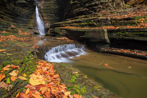 Watkins Glen located in the Southern Tier of New York State is also an amazing location to photograph fall color. Even when the leaves have fallen from the tree's they make a great subject lining the bank of the stream. Technical Details: Canon EOS 5D Mark III, 24mm TS-E F3.5 L II
