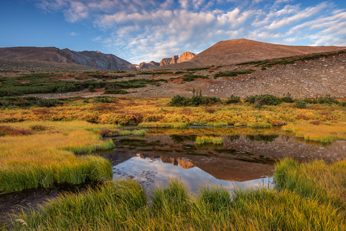 Landscape photographers will flock to Rocky Mountain National Park this time of year to capture the autumn in all her glory. Most photographers will be looking to photograph golden hillsides of aspens trees. Dont overlook the beautiful autumn color currenlty unfolding at or near timberline in Rocky. I photographed these beautiful fall colors just below Longs Peak on the alpine tundra yesterday. Our mild nights have allowed for the colors to really pop in the higher elevations of the park. Technical Details: Nikon D810, Nikkor 16-35mm F4 ED VR