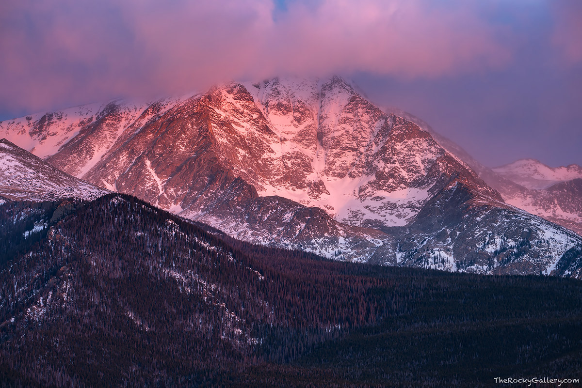 The last sunrise of 2016 was a colorful one over the Mummy Range of Rocky Mountain National Park. While most of the skies over Rocky this windy morning were cloudless, a nice set of clouds clung to the top of Ypsilon Mountain adding some nice warmth to the cool morning. I'm looking forward to new pursuits and images in 2017 after a great 2016. Technical Details: Nikon D810,Sigma 150-600mm f/5-6.3 DG OS HSM C