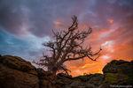 Apache,Arapaho,Battle,Indian Fort,Upper Beaver Meadows,Rocky Mountain National Park,Sunrise,Beaver Mountain,July,Landscape,Photography,RMNP,Estes Park,Colorado
