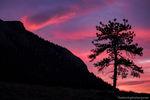 Deer Mountain,Estes Park,March,RMNP,Trail Ridge Road,Rocky Mountain National Park,Sunrise,Landscape,Photography,Colorado,Skies,trees