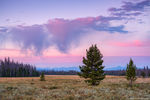 Harbison Meadow,Annie,Kitty,Sisters,Homestead,Colorado,RMNP,Grand Lake,Trail Ridge Road,Sunrise,August,Sage,Rocky Mountain National Park,Colorado,Landscapes,West Side, Kawuneeche Valley,Gore Range