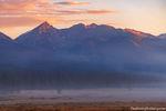 Harbison Meadow,Baker Mountain,Grand Ditch,West Side,RMNP,Grand Lake,Trail Ridge Road,Colorado,Landscape,Photography,Rocky Mountain National Park,fog,July,Kawuneeche Valley,Bear,Elk,Moose,Colorado Riv