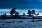 Moraine Park,Moonlit,Moonset,Big Thompson,River,Bear Lake Road,Estes Park,RMNP,Colorado,Rocky Mountain National Park,Landscape,Photography,Blue,October,Fall