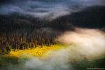 Poudre River,Fog,Trail Rige Road,Estes Park,August,Grand Lake,RMNP,Colorado,Landscape,Photography,Rocky Mountain National Park