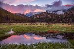 Stones Peak,Moraine Park,Elk,Sunrise,May,Snow,Meadow,Landscacpe,Photography,Colorado,Estes Park,Rocky Mountain National Park,RMNP,Cub Lake