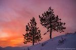 Sunrise,January,Upper Beaver Meadows,Estes Park,RMNP,Colorado,Landscape,Photography,Rocky Mountain National Park,