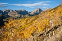 Rocky Mountain National Park, Colorado, Aspens, Autumn, Hallet Peak, Bierdstadt Moraine