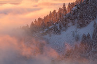 Boulder,Inversion,flatirons,Chautauqua Park,Flagstaff Mountain,Fog,Sunrise,pines,snow,Colorado,Open Space and Mountain Parks