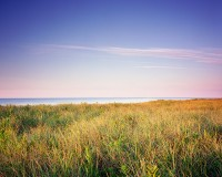 Coopers Beach, Southampton, New York, Beaches, Dunes