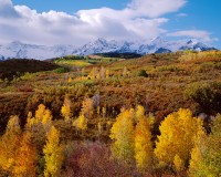 Dallas Divide, Telluride, Ouray, Ridgeway, San Juans, Fall Color