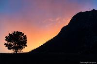 Deer Mountain, Sunrise,Horseshoe Park,Fall River Road,Sunrise,Landscape,Photography,RMNP,Colorado,Estes Park,Pines,winter,January