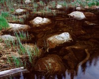 Rocky Mountain National Park, Colorado, Dream Lake, Hallet Peak, Flattop Mountain, Intimate
