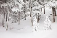 Colorado, Boulder, Flattop Mountain, Winter, Snow, OSMP, Open Space