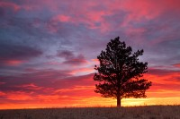 Boulder,Colorado,Open Space,OSMP,Sunrise,colors