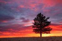 Boulder,Colorado,Open Space,OSMP,Sunrise,colors