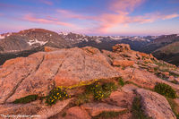 Forest Canyon, Trail Ridge Road,Sunrise,Photography,Rocky Mountain National Park,Colorado,RMNP,Estes Park,Terra Tomah