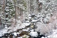 Glacier Creek,April,Spring,Snow,Stream,Bear Lake Road,Estes Park,RMNP,Rocky Mountain National Park,Colorado,Landscape,Photography
