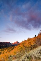 Rocky Mountain National Park, Colorado, Autumn, Aspens, Sunrise