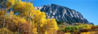 Crested Butte, Kebler Pass, Gunnison, Fall Color, Aspens, Marcellina Mountain