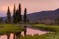 Rocky Mountain National Park, West Side, Kawuneeche Valley, Coyote,RMNP,Grand Lake, Trail Ridge Road, Colorado River,Sunset,Landscape,Photography,Colorado,moose