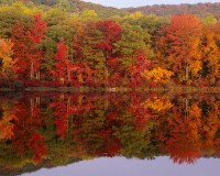 Harriman State Park, Palisade Interstate Park, Hudson Valley, Fall Color, Bear Mountain State Park