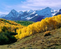 San Juans, Fall Color, Last Dollar Road, Ridgeway, Telluride, Ouray, Aspens