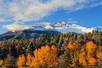 Rocky Mountain National Park, Colorado, Fall Color, Aspens, Beaver Meadows, Snow