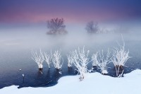 Boulder, Colorado, Sawhill Ponds, Open Space, OSMP, Fog, Rime Ice