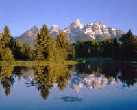 Grand Teton National Park, Snake River, Jackson Hole, Schwabachers Landing