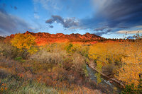 Flatirons,Boulder,Eldorado Springs,Open Space,Autumn,Cottonwoods,South Boulder Creek
