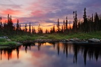 Two Rivers Lake, Tarn, Colorado,Rocky Mountain National Park, Sunrise,Lake,Reflection