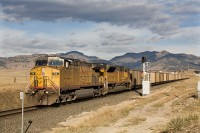 Union Pacific 7111 east at Leyden, CO