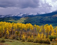 Crested Butte, West Elk, Mountains, Kebler Pass, Fall Color, Aspens