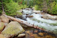 Rocky Mountain National Park, Wild Basin, Colorado, North Saint Vrain
