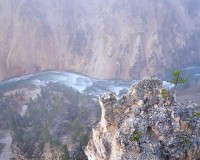Grand Canyon, Yellowston National Park, Canyon Village, Jackson Hole, River, Fog