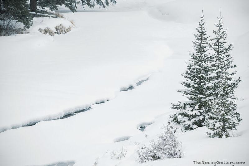 Colorado Frozen