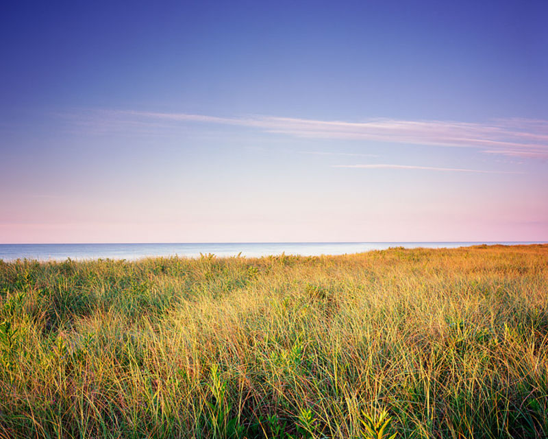 Coopers Beach and Dune Grass