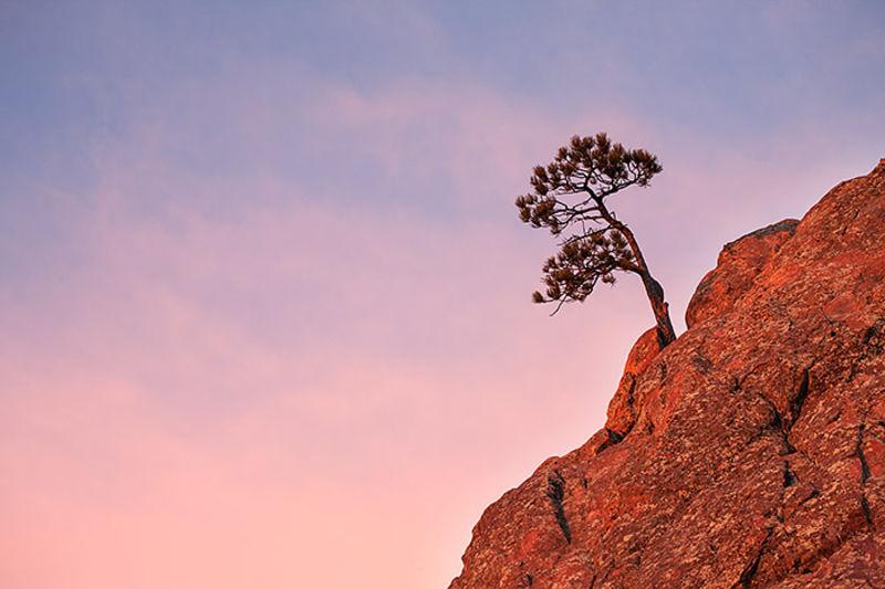 Between Rock And Sky