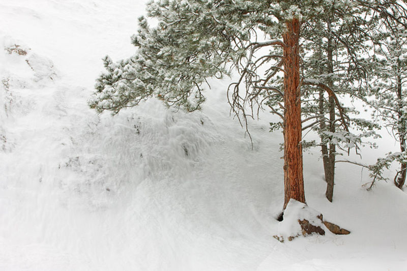Fern Canyon Avalanche