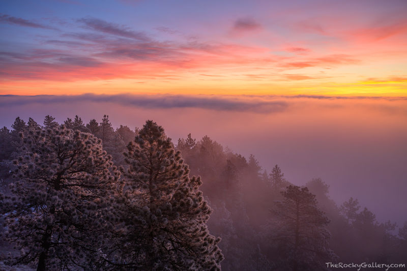 Flagstaff Mountain,Boulder,Colorado,Sunrise,Inversion,February,Snow,Ice,Frost,Landscape,Photography,Open Space and Mountain Park,OSMP,Flagstaff Road