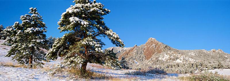 Boulder Flatirons in White