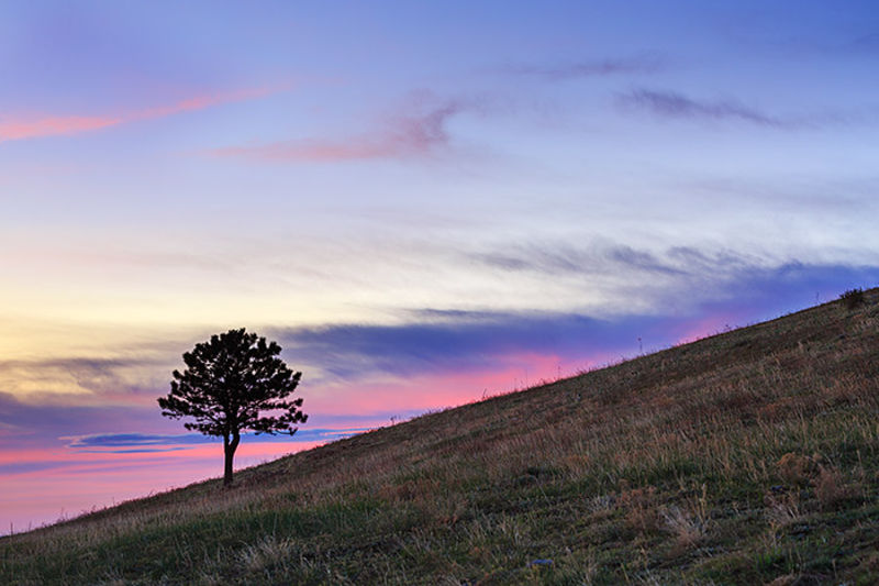 Plain Sunrise