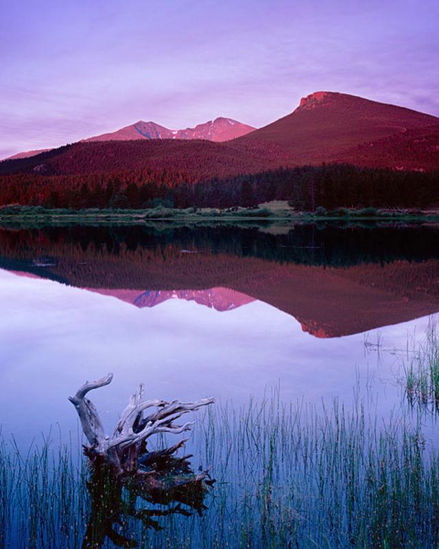Lily Lake Dawn