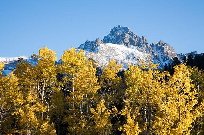 Fall Aspens and Mt. Sneffels